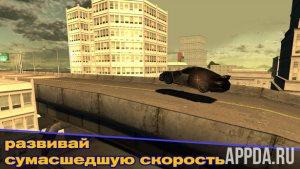 Rally Master Pro 3D [ВЗЛОМ]