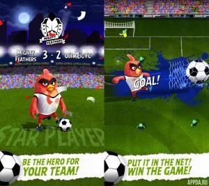 Angry Birds Goal! v 0.4.5 [ВЗЛОМ]